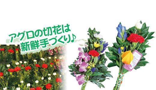 《終了しました》9月19日(木)~23日(月・祝) お彼岸の新鮮切花市