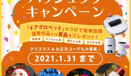 【2021.1.31まで】ペットとWinterPHOTO! ハッシュタグキャンペーン